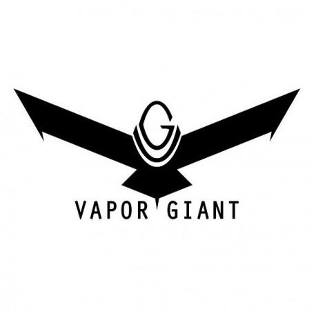 Kit de maintenance pour Vapor Giant Mini v4